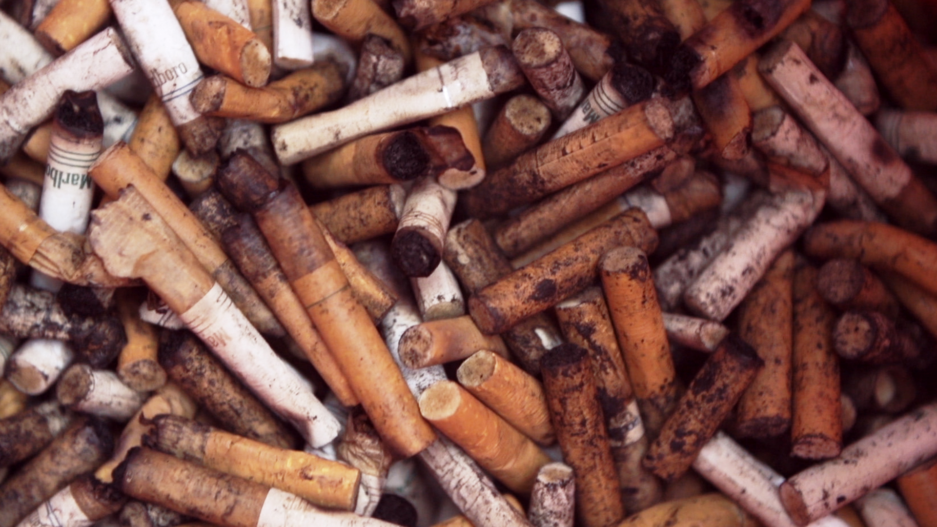 Watch Cigarette Butts World S 1 Litter Recycled As