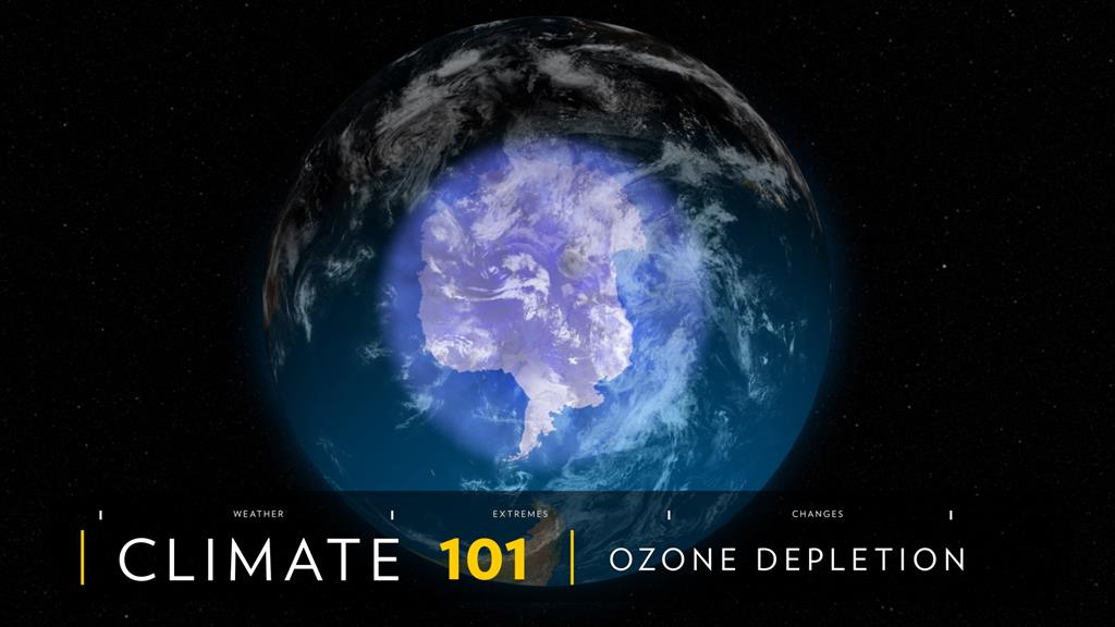 Whatever Happened to the Ozone Hole?