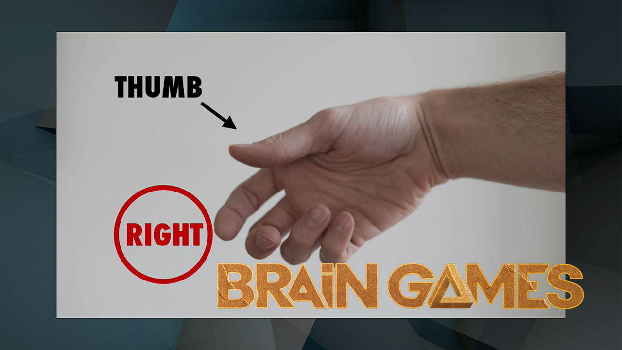 graphic relating to Left Brain Right Brain Test Printable referred to as Intellect Video games