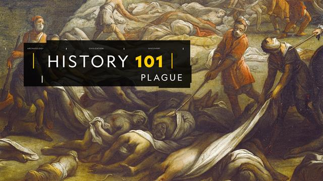 Plague 101
