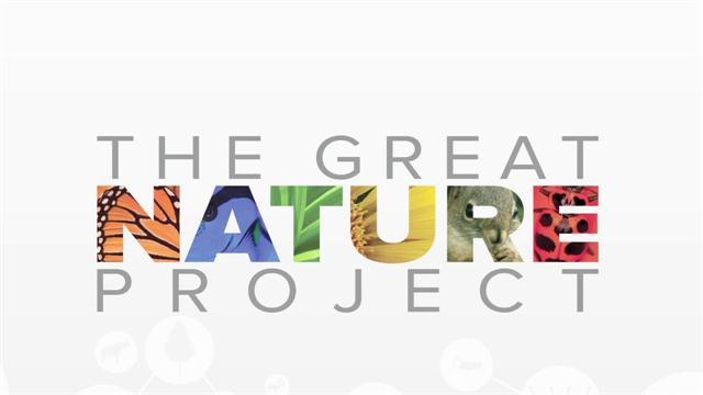 0BC9 Outdoor Creative DIY Plastic Bottle Rope Cutter Environmental Tool Decorati